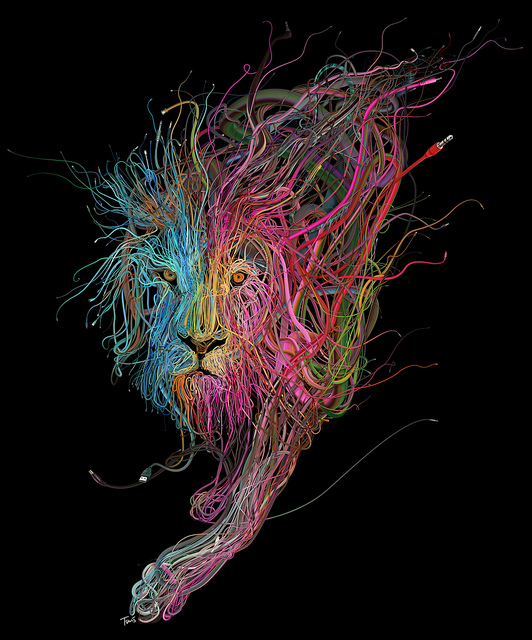 The Conquering Lion: Plug into the power of Reggae by Charis Tsevis